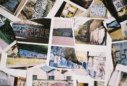 Urban Jungle 2