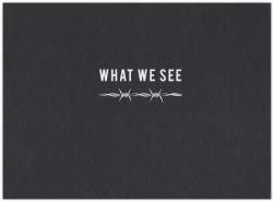 What We See-kniha