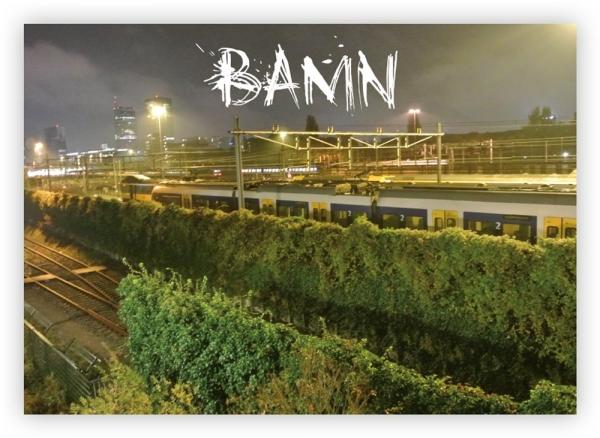 BAMN 2